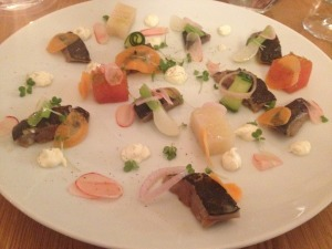 Gastro mackerel